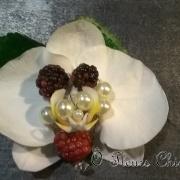 img Boutonnière orchidée