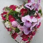 img Coeur orchidées