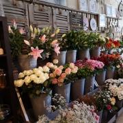 img Fleurs Coupées