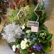 img coupe de plantes blanche et violette