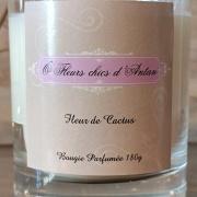 Bougie parfumée Fleur de cactus