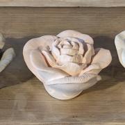 Plâtres parfumées roses pm