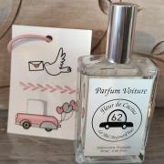 Spray parfum de voiture et carte diffuseur Fleur de cactus